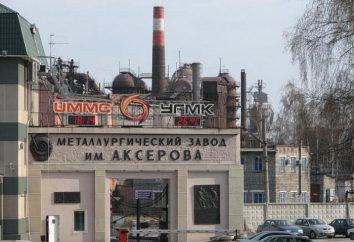 Nadezhda usine métallurgique (Serov usine métallurgique nommé d'après A. K. Serova.): Histoire, description, produits
