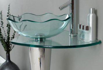 Szkło umywalką: wykorzystywania informacji zwrotnej. Czy zainstalować szkło Zlewozmywaki FRAP
