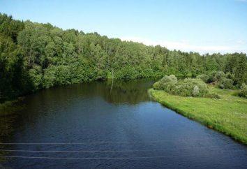 Vazuza – l'affluente di destra del Volga