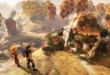 Melhores Jogos-ação no PC: a lista de classificação, uma descrição do