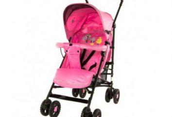 Wózek spacerowy Glory 1109: zalety i wady (opinie). Wózek dziecięcy Glory 1109: opis, cechy modelu