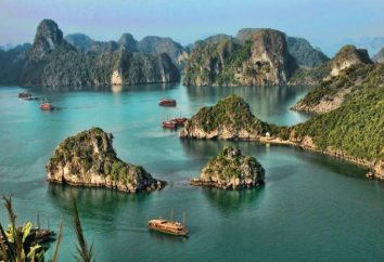 Lo Stato del Vietnam: Sud, Nord e Centro