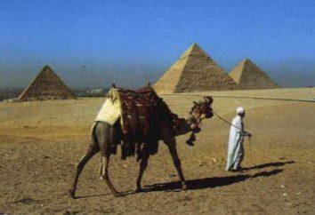 Saison in Ägypten. Bewertungen. Wann beginnt die Saison in Ägypten