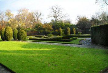 Les meilleurs parcs à Londres: St. James, Hyde Park, Richmond, Victoria, Kensington Gardens, Green Park