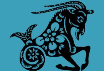 Zodiac Merkmale: männlich Steinbock-Hahn – was ist das?