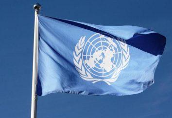 O Secretariado da ONU: estrutura, composição, função