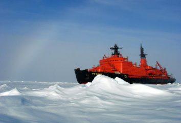 """Lodołamacz o napędzie atomowym """"Arktika"""": opis i zdjęcia. klasa nowoczesnych lodołamacze """"Arctic"""""""
