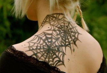 """Tattoo """"web"""": der Wert und die Bedeutung des Bildes"""