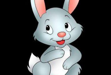 conte de fées sur un lapin et ses amis