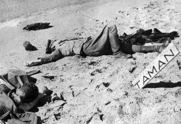 Por que a 89ª divisão de Taman foi chamada de armênio