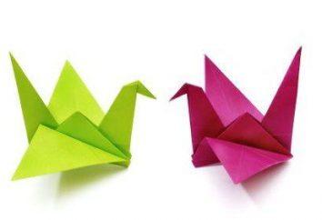 Wie einen Kran aus Papier zu machen? Wir lernen Rezept für Glück
