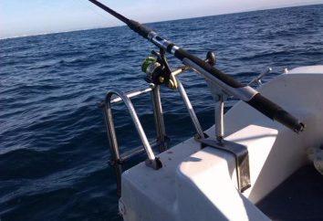 rod Samopodsekayuschaya para a pesca de verão: o dispositivo, como pegar, comentários