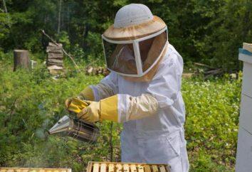 Beekeeper Anzüge: Hauptmerkmale