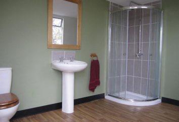 Kabina prysznicowa: design, funkcje, wydajność i opinie