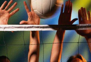 Qu'est-ce que le volley-ball? concepts et définitions de base en volley-ball