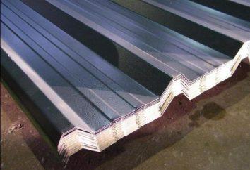 A inclinação do telhado mínima da folha trapezoidal: parâmetros admissíveis, particularmente o cálculo e recomendações