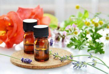 ¿Cuál es la mejor crema para el cuerpo: La manteca de karité, de sésamo, de oliva o de almendras