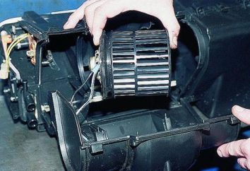 Chauffe VAZ-2110. radiateur poêle VAZ-2110