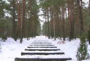 Treblinka (campo de concentração): a história. Memorial em Treblinka
