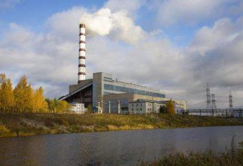 Cherepovetskaya TPP: caractéristiques et particularités