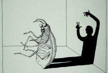 "F. Kafka ""Transformation"": résumé, analyse, commentaires"