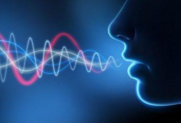 Jaka jest intonacja mowy?