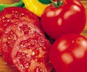 Das ursprüngliche Rezept: Tomaten in Gelatine