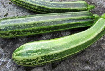 Cooking zucchine istante salamoia mangiare: rapidamente e facilmente