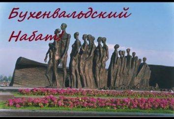 """""""Buchenwald-Alarm"""": zeitlose Anziehungskraft und eine Erinnerung"""