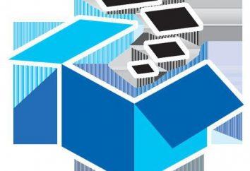 CDF Excel – co to jest? Dowiedz się, jak pracować w programie Excel WYSZUKAJ.PIONOWO