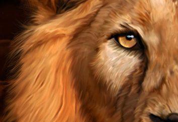 signes compatibles: Leo et Leo, Vierge et Lion