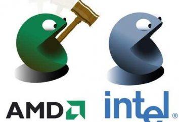 Welcher Prozessor ist besser: AMD oder Intel x86