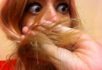 aceite de pelo para las puntas abiertas. Productos para el cuidado del pelo