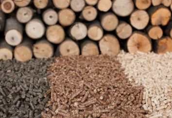 ¿Qué es la biomasa? ¿Cuál es su propósito