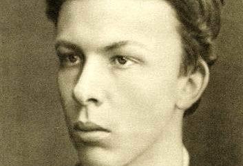 Alexander Ulyanov – Narodovolets rivoluzionaria, il fratello di Lenin. Biografia, attività rivoluzionaria