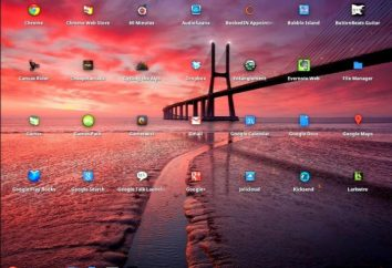 Chrome OS: Instalacja na dysku USB