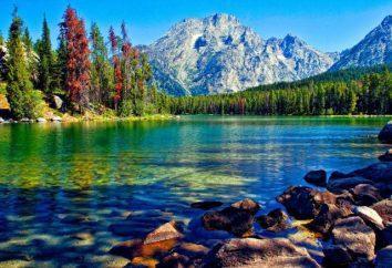 Pourquoi rêver d'un lac? Quel rêve de nager dans le lac?
