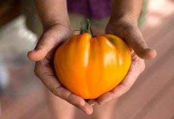 Orange fraise allemande tomate: description de la variété, commentaires