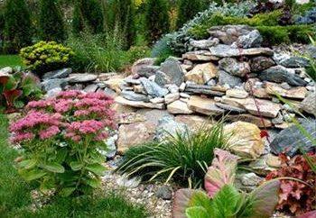 Progettazione paesaggio del giardino con le proprie mani
