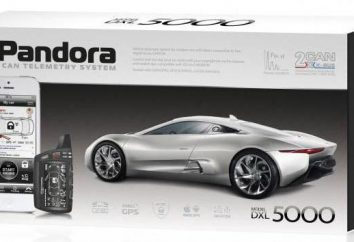 """Pandora 5000"": instalacja. ""Pandora 5000"": opis, charakterystyka"
