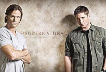 """Najstraszniejsze serii """"Supernatural"""", historia serii o dysku twardym, jego zawartość"""