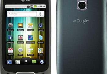 LG Optimus One P500: Cechy i opinie