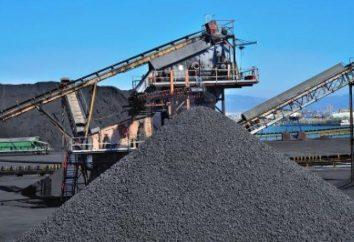 Carbone dell'Ucraina. L'estrazione del carbone in Ucraina. Una tonnellata di carbone: prezzo