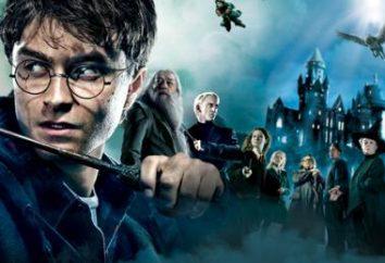 El universo de Harry Potter. ¿El muggle es quién?