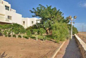 Nahariya (Israël): une oasis de verdure
