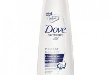 """Szampon wypadanie włosów od marki Dove ( """"Dove""""). Szampon """"Kontrola wypadanie włosów"""": opinie, skład"""