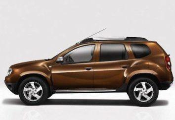 Renault Daster: Diesel oder Benzin – welcher Motor ist am besten zu wählen