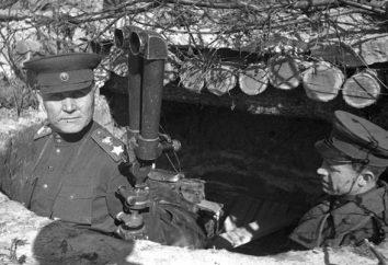 2 El frente ucraniano: la batalla, la crónica de las operaciones militares