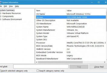 Come trovare il numero di assembly di Windows 10: metodi di base