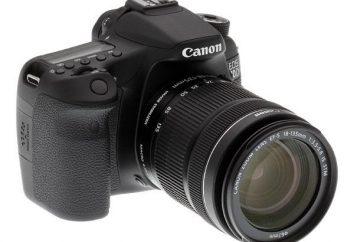 cámara digital Canon: opiniones. Cámara Canon: reparación. La mayoría de las cámaras Canon